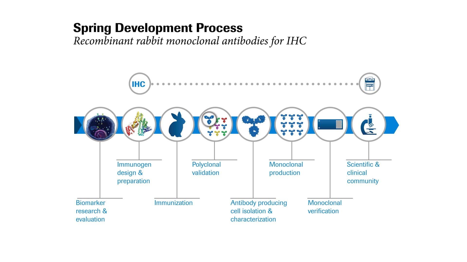 Spring Bioscience Development Process