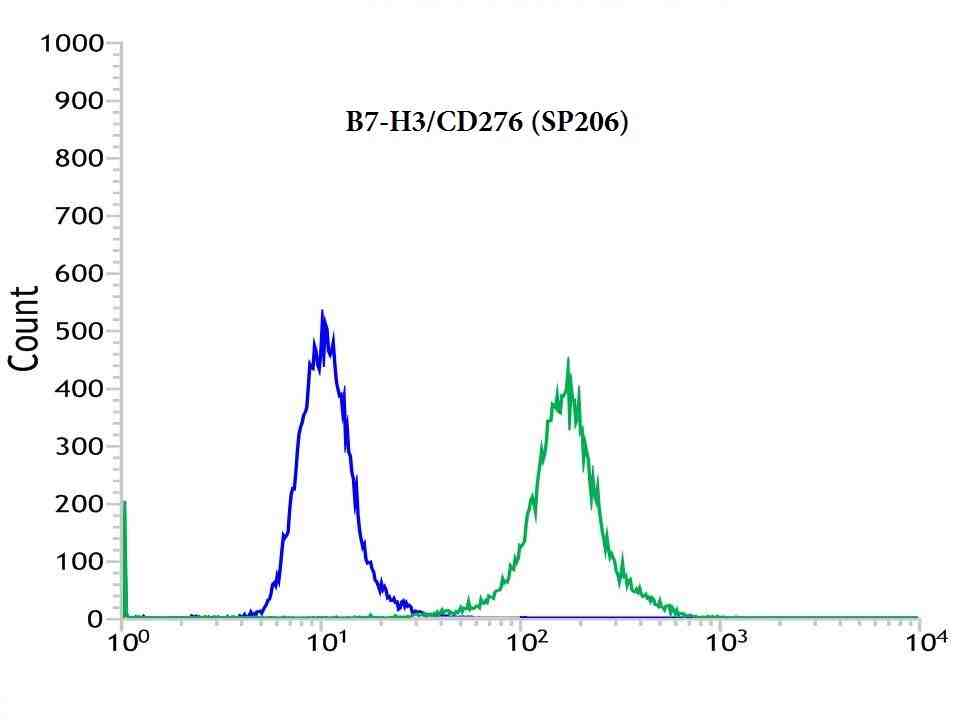 Flow cytometric analysis of rabbit anti-B7-H3_CD276 (SP206) antibody in 293 (green) compare to negative control of rabbit IgG (blue)