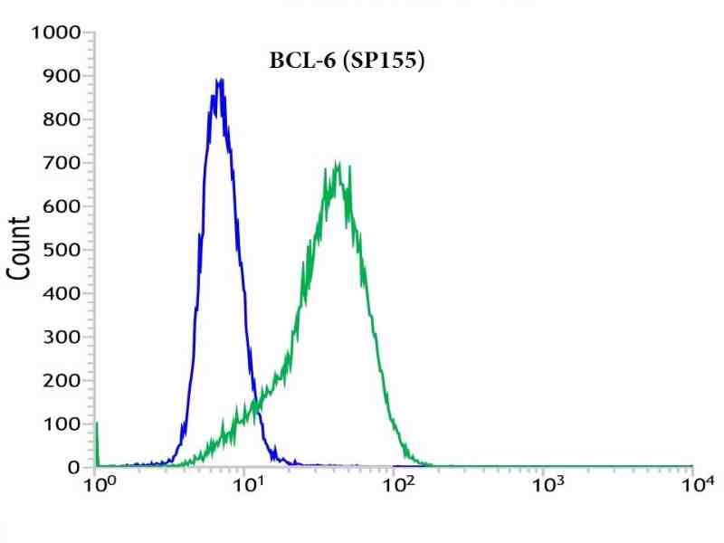 Flow cytometric analysis of rabbit anti-BCL-6 (SP155) antibody in RAMOS (green) compare to negative control of rabbit IgG (blue)