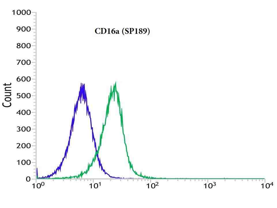 Flow cytometric analysis of rabbit anti-CD16a (SP189) antibody in Jurkat (green) compare to negative control of rabbit IgG (blue)