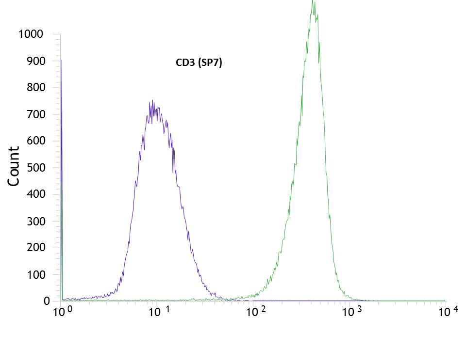 Flow cytometric analysis of rabbit anti-CD3 (SP7) antibody in Jurkat (green) compare to negative control of rabbit IgG (blue)
