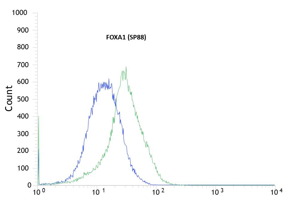Flow cytometric analysis of rabbit anti-FOXA1 (SP88) antibody in HEPG2 (green) compare to negative control of rabbit IgG (blue)
