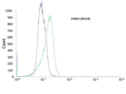 Flow cytometric analysis of rabbit anti-FOXP1 (SP133) antibody in MOLT4 (green) compare to negative control of rabbit IgG (blue)