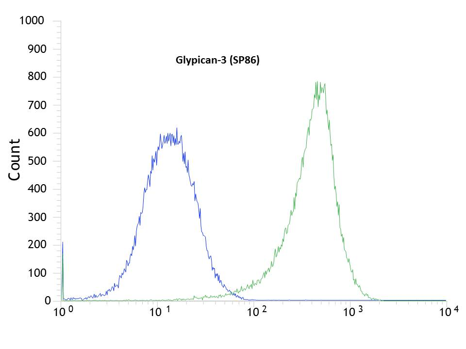 Flow cytometric analysis of rabbit anti-Glypican-3 (SP86) antibody in HEPG2 (green) compare to negative control of rabbit IgG (blue)