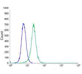 Flow cytometric analysis of anti-GPNMB (SP299) antibody in A375 cells (green) compare to negative control of rabbit IgG (blue)