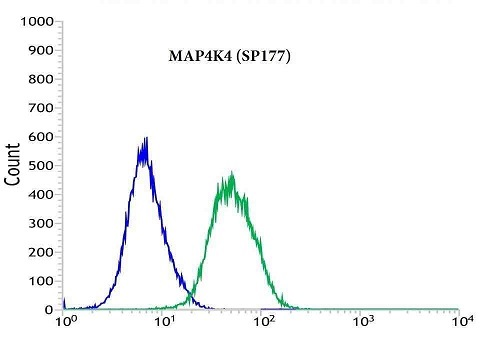 Flow cytometric analysis of rabbit anti-MAP4K4 (SP177) antibody in HEPG2 (green) compare to negative control of rabbit IgG (blue)