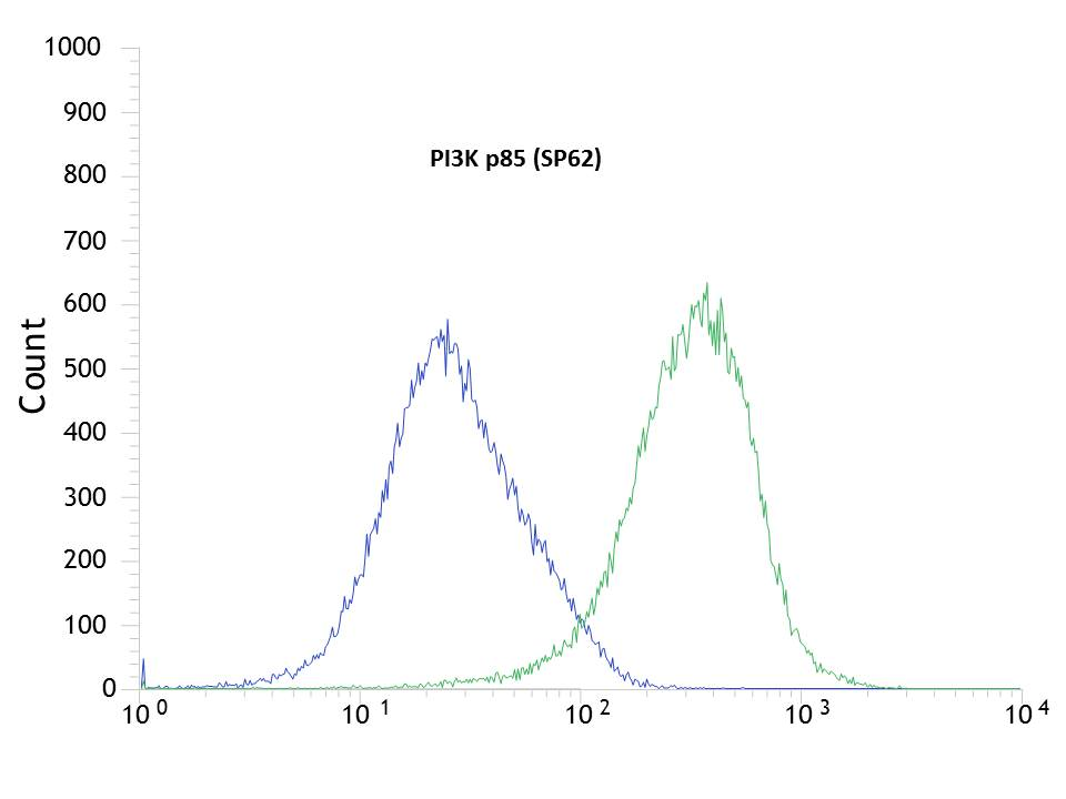 Flow cytometric analysis of rabbit anti-PI3K p85 (SP62) antibody in MCF7 (green) compare to negative control of rabbit IgG (blue)
