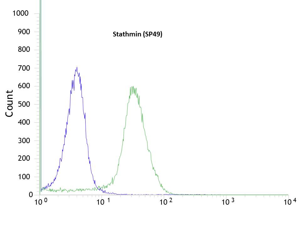 Flow cytometric analysis of rabbit anti-Stathmin (SP49) antibody in HeLa (green) compare to negative control of rabbit IgG (blue)