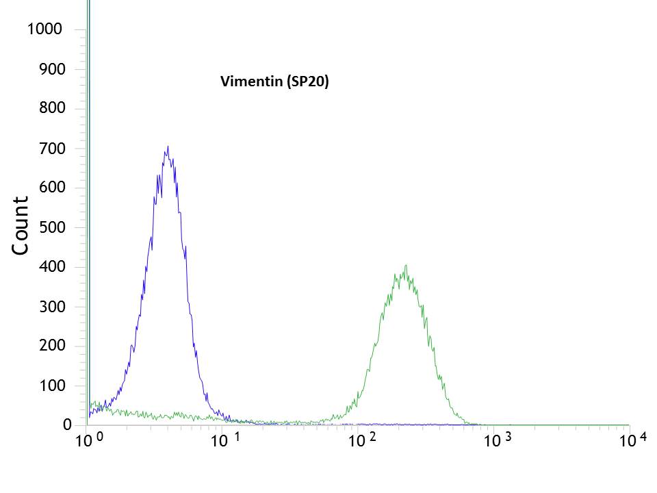 Flow cytometric analysis of rabbit anti-Vimentin (SP20) antibody in HeLa (green) compare to negative control of rabbit IgG (blue)