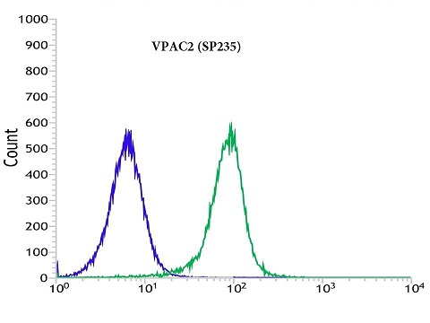 Flow cytometric analysis of rabbit anti-VPAC2 (SP235) antibody in Jurkat (green) compare to negative control of rabbit IgG (blue)